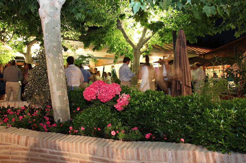 Bar de copas en Toledo