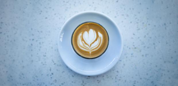 cafesolidario