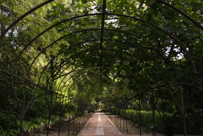 Jardines del Catering en el Jardín Botánico